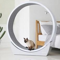 펫링 고양이 휠 하우스형 스크레쳐 C2, 그레이, 1개